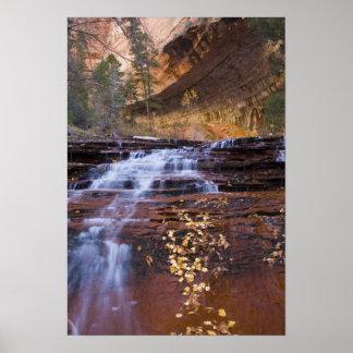 El arcángel conecta en cascada en la bifurcación i impresiones