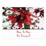El arce rojo cierra la invitación botánica del com postal