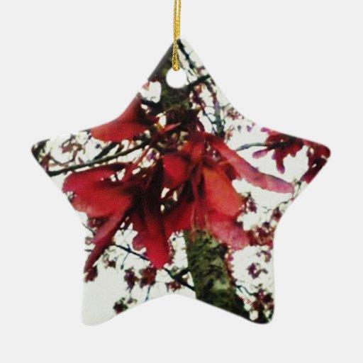 El arce rojo cierra natural botánico adorno de cerámica en forma de estrella