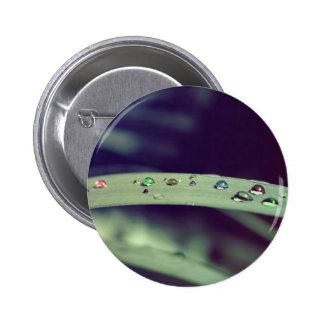El arco iris cae la insignia/el botón pin redondo de 2 pulgadas