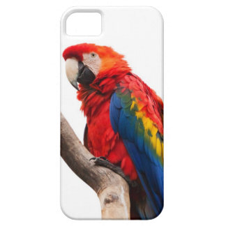 El arco iris coloreó la imagen del loro del Macaw  iPhone 5 Cárcasas