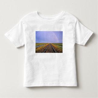 El arco iris sobre pistas de ferrocarril acerca a camisas