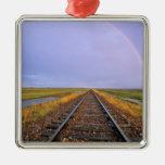 El arco iris sobre pistas de ferrocarril acerca a  ornatos