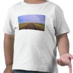 El arco iris sobre pistas de ferrocarril acerca a camiseta