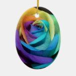 El arco iris subió florece destino del amor de la  adornos de navidad