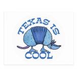 El armadillo Azul-Tejas es fresco Postal