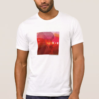 El arquetipo del buscador camisetas