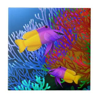 El arrecife de coral real de Gramma pesca la teja