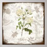 El arte botánico del vintage imprime el inglés del poster