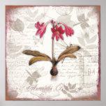 El arte botánico del vintage imprime la belladona impresiones