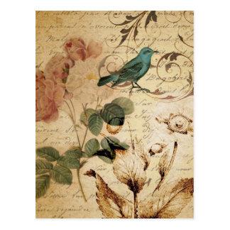 el arte botánico del vintage subió femenino floral postal