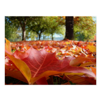 El arte de la naturaleza imprime las hojas de otoñ impresiones