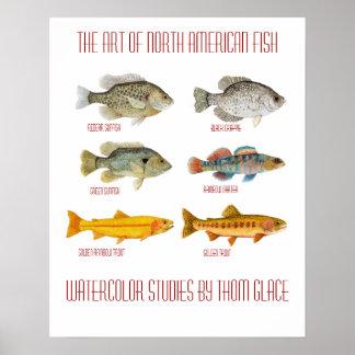 El arte de pescados norteamericanos impresiones