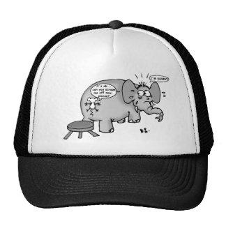 El arte del perdón gorras