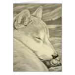 El arte del perro de Shiba Inu carda las tarjetas