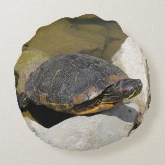 El asolear de la tortuga cojín redondo