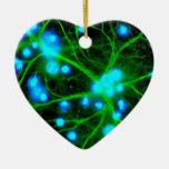 El Astrocyte es células de Glial asteroides en el Adorno Navideño De Cerámica En Forma De Corazón