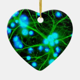 El Astrocyte es células de Glial asteroides en el Adorno De Cerámica En Forma De Corazón