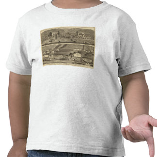 El aterrizaje de Anderson de los trabajos de Camiseta
