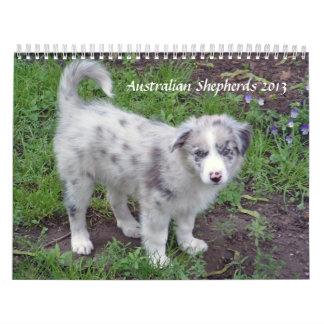 El australiano Shepherds el calendario 2013