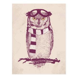 El aviador tarjetas postales