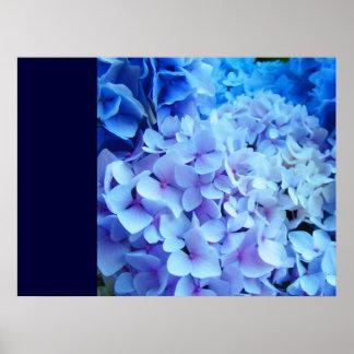 El AZUL añade su propia flor del Hydrangea de las  Impresiones