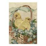 El azul de la cesta del polluelo de Pascua me olvi Impresión Fotográfica