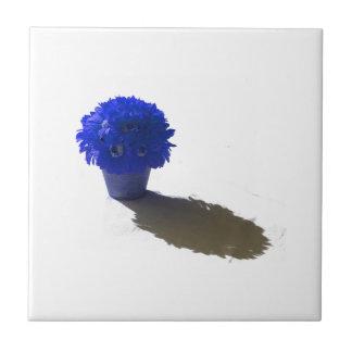 El azul florece el cubo y la sombra blancos azulejo cuadrado pequeño