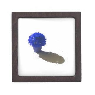 El azul florece el cubo y la sombra blancos cajas de joyas de calidad