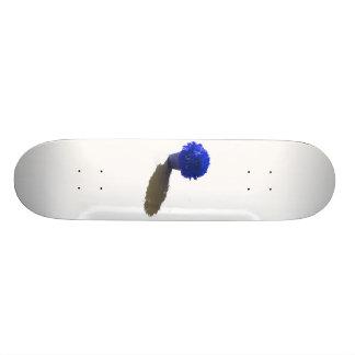 """El azul florece el cubo y la sombra blancos patineta 7 3/8"""""""