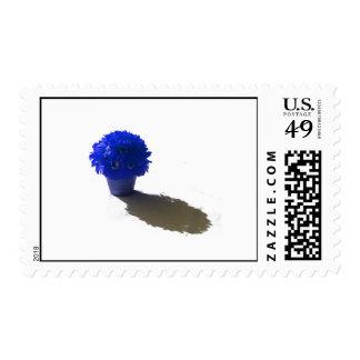 El azul florece el cubo y la sombra blancos sellos postales