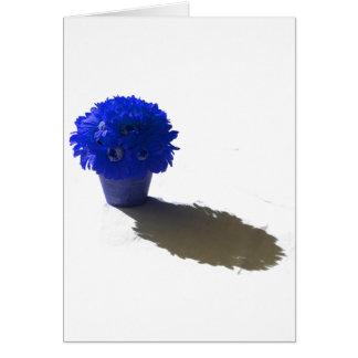 El azul florece el cubo y la sombra blancos tarjeta pequeña