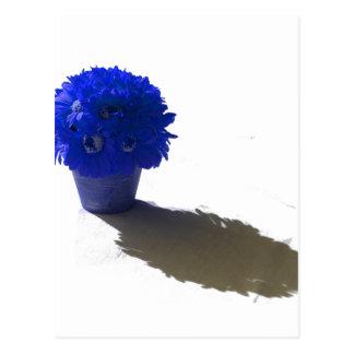 El azul florece el cubo y la sombra blancos postales