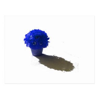 El azul florece el cubo y la sombra blancos tarjeta postal