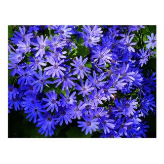 El azul florece la postal