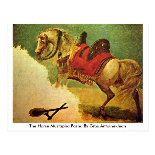 El bajá de Mustapha del caballo por Gros Antoine-J Tarjetas Postales