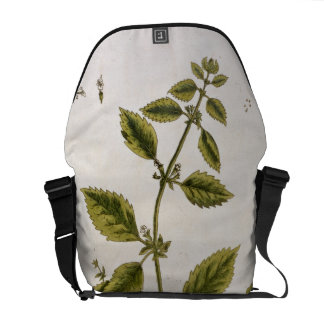 """El bálsamo, platea 27 """"de un herbario curioso"""", pu bolsa de mensajería"""