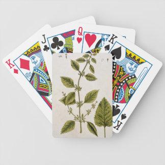 """El bálsamo, platea 27 """"de un herbario curioso"""", pu baraja cartas de poker"""