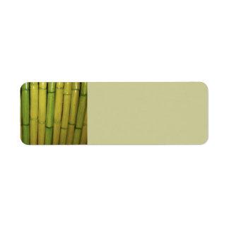 El bambú asiático del verde del zen acecha la foto etiqueta de remitente