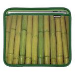 El bambú asiático del verde del zen acecha la foto fundas para iPads