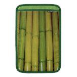 El bambú asiático del verde del zen acecha la foto funda macbook air