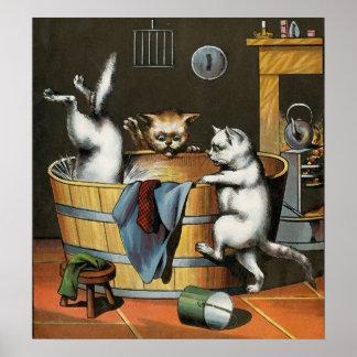El baño de los gatitos - arte del vintage póster