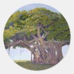 El Banyan de MacArthur Etiquetas Redondas