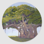 El Banyan de MacArthur Pegatina Redonda