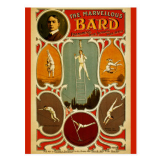 El bardo maravilloso tarjeta postal