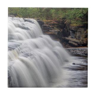 El barranco cae en el río del esturión cerca de azulejo cuadrado pequeño