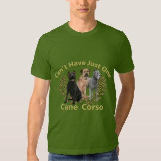 El bastón Corso no puede tener apenas uno Camisas