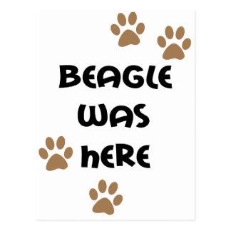 El beagle estaba aquí tarjeta postal