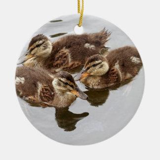 El bebé Ducks la foto Adorno Redondo De Cerámica