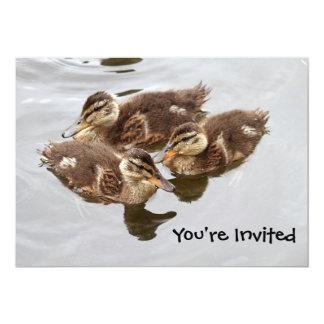El bebé Ducks la foto Invitación 12,7 X 17,8 Cm